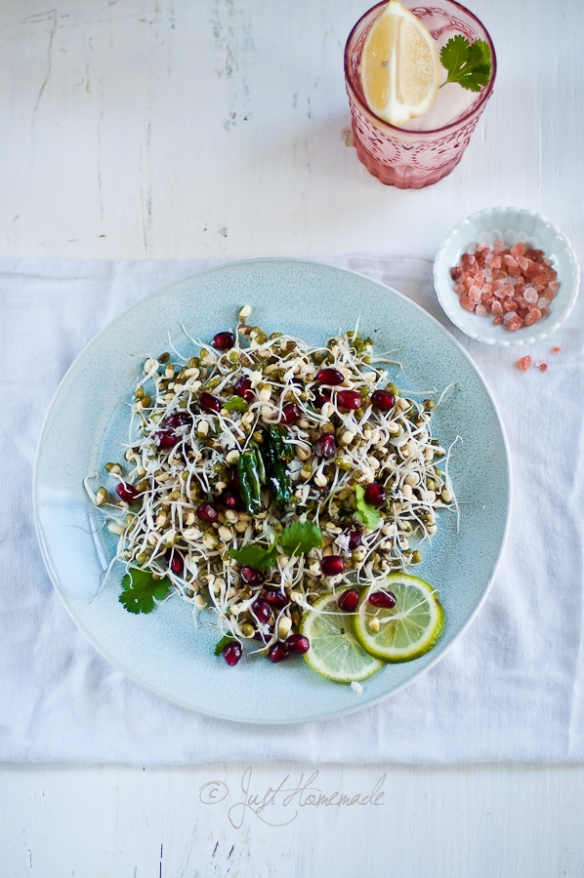 mung sprouts anar salad ed