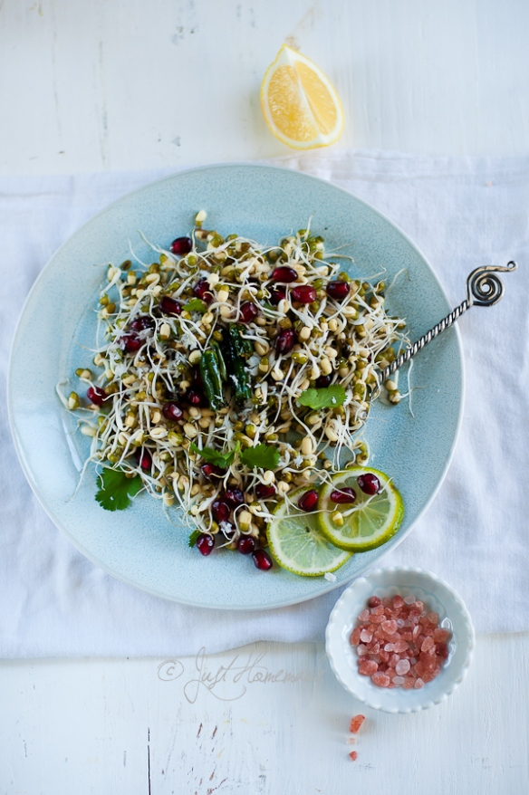 mung sprouts pom salad plated