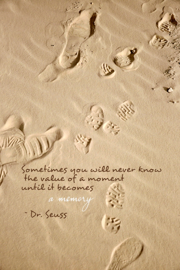 dr seuss quotes sometimes you will never know the value of a moment until it becomes a memory