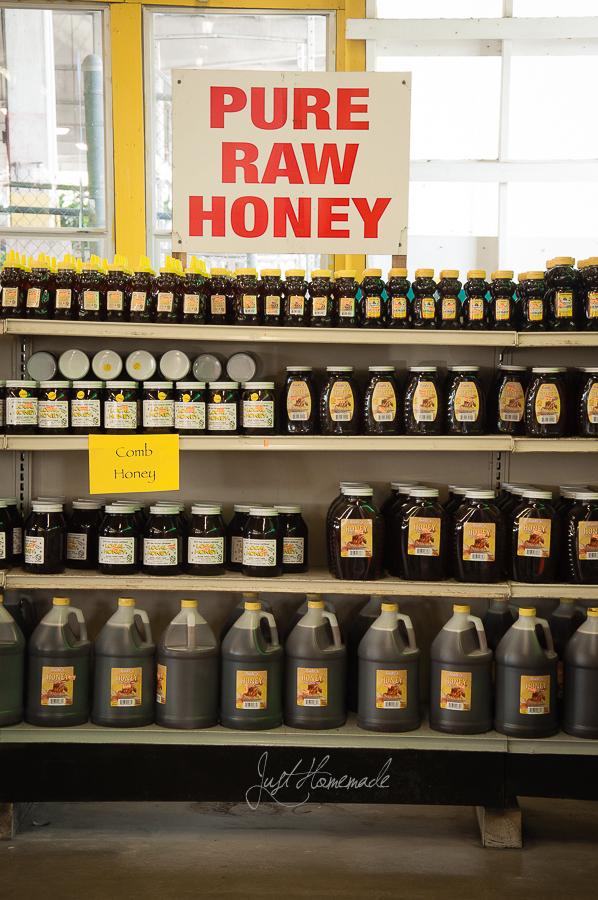 caninos-pure honey